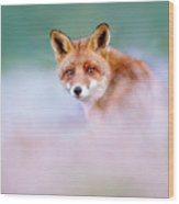 Red Fox In A Mysterious World Wood Print
