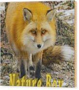 Red Fox Nature Boy Wood Print