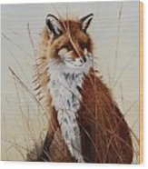 Red Fox Waiting On Breakfast Wood Print