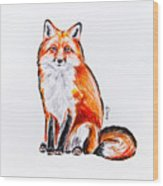 Red Foxie Wood Print