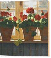 Red Geraniums Basking Wood Print