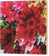 Red Gerbera Daisy Abstract Wood Print