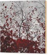 Red Glitter Wood Print