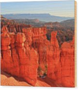Red Glow In Bryce Canyon Wood Print