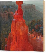Red Glow Of The Sunrise On Thor's Hammer In Bryce Canyon Wood Print