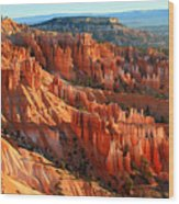Red Glow On The Hoodoos Of Bryce Canyon Wood Print