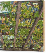 Red Grapes Hanging From A Trellis Napa Valley California Wood Print by George Oze