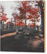 Red Fall Graveyard Wood Print