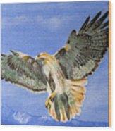 Red Hawk, 11x14, Oil, '07 Wood Print