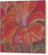 Red Hibiscus #1 Wood Print