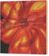 Red Hibiscus 1 Wood Print