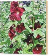 Red Hollyhocks Wood Print
