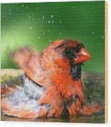 Red Hot Bath Wood Print