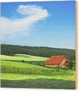 Red House In Field - Amshausen, Germany Wood Print