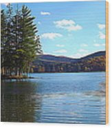 Red House Lake Allegany State Park In Autumn Expressionistic Effect Wood Print