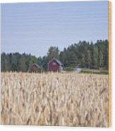 Red House Wheat Field Wood Print