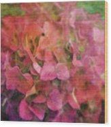 Red Hydrangea 2421 Idp_2 Wood Print