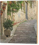 Red Ivy And Steps In Assisi Italy Wood Print