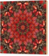 Red Kaleidoscope No. 1 Wood Print
