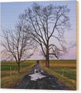 Red Lane With Purple Sky Wood Print