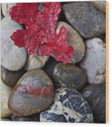 Red Leaf Wet Stones Wood Print