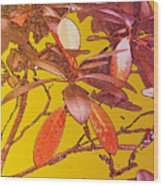 Red Leaves Gold Sunset Wood Print