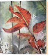 Red Leaves In Morning Mist Wood Print
