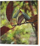 Red Leaves With Texture Wood Print