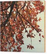 Red Life Wood Print
