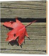 Red Maple Leaf On A Boardwalk  Wood Print