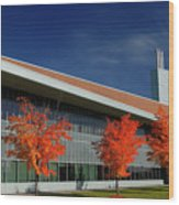 Red Maple Trees And Modern Architecture Of Seneca College York U Wood Print