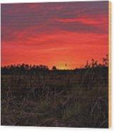 Red Marsh Sunrise Wood Print
