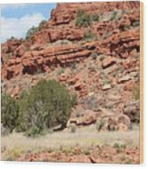 Red Mesa And Yellow Flowers Wood Print