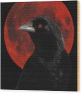 Red Moon Black Crow Wood Print