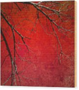 Red Morning Wood Print