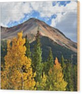 Red Mountain Fall Colors Wood Print