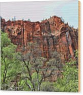 Red Mountains Zion National Park Usa Wood Print