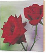 Red Mr. Lincoln Roses Wood Print