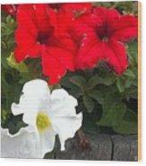 Red N White Wood Print