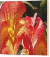 Red N Yellow Flowers 2 Wood Print