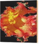 Red N Yellow Flowers Wood Print