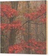 Red Oak In Fog Wood Print