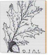 Red Oak Leaf And Acorn Wood Print