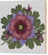 Red Open Faced Potentilla Pressed Flower Arrangement Wood Print
