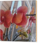 Red Orchid Flowers 01 Wood Print