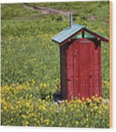 Red Outhouse 3 Wood Print