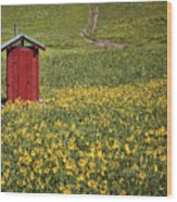 Red Outhouse 6 Wood Print