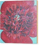 Red  Peonie Wood Print
