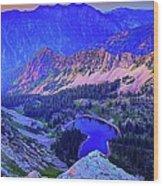 Red Pine Panorama Wood Print