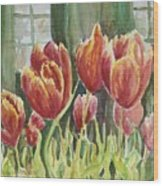 Red Pink Tulips Wood Print